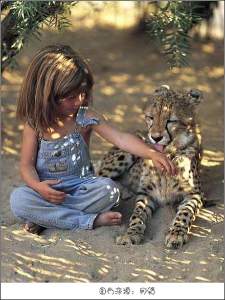 回忆她跟随爸爸妈妈在非洲与野生动物共同成长的故事