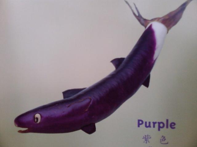 用水果蔬菜制作可爱动物