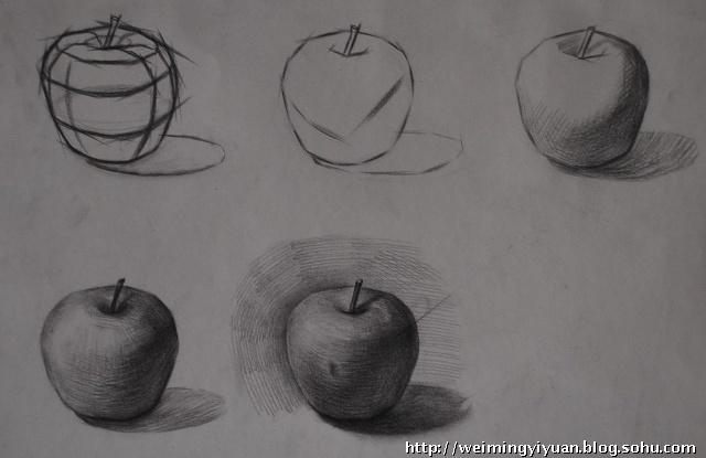 (一)用直线画苹果大的形体-苹果素描写生图片
