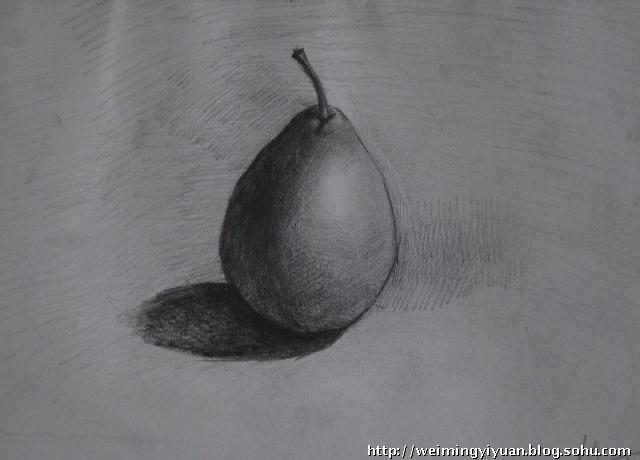分享到:              苹果素描写生            不锈钢杯素描写生