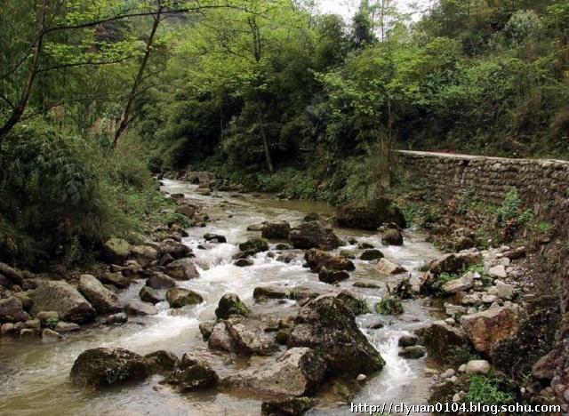 野山——崇州市三郎镇茶园村