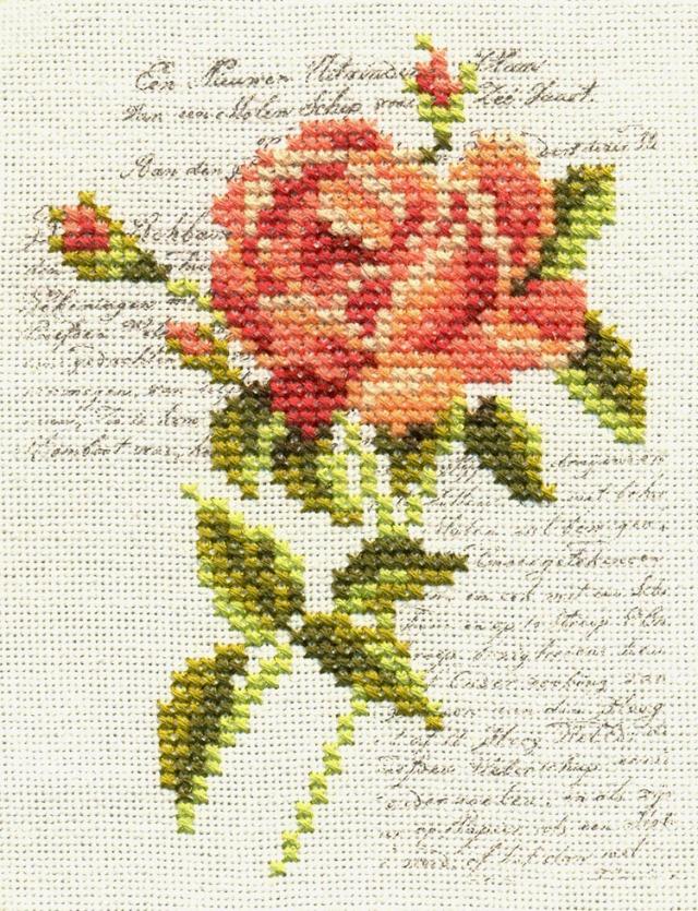 红色玫瑰花(十字绣)20100501-0502!