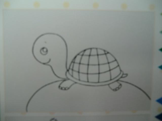 美术绘画步骤《小乌龟》