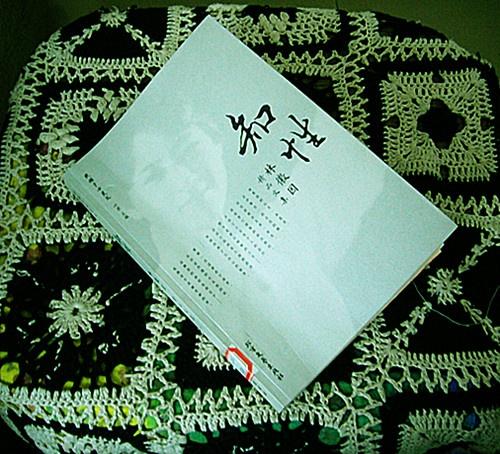 下心来认真阅读林徽因的作品——新月时期的新诗以及白话