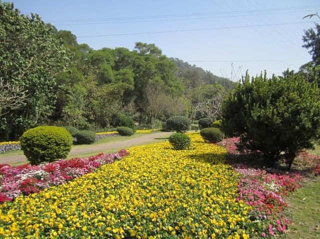 花卉园设计成欧式园林,田园气息浓郁,各种热带,亚热带花草景观营造出