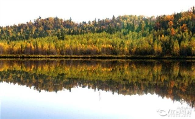伊春五营国家森林公园,告别我的大学生涯